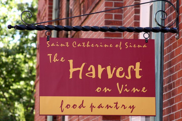 The Harvest on Vine